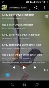 Suara Burung Isian Mp3 poster