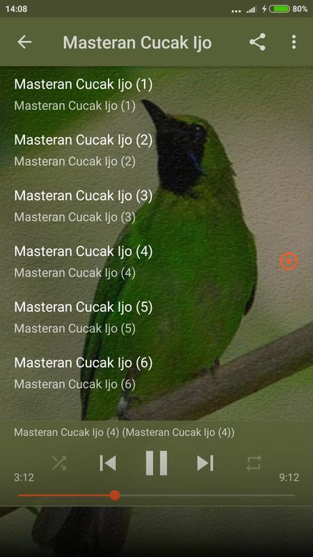 Master cucak ijo mini gacor for android apk download.