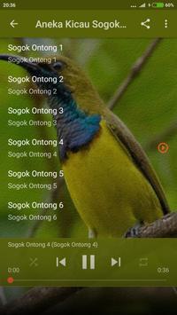 Download Suara Pikat Burung Sogok Ontong Mp3 Apk For Android Latest Version