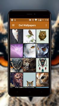 Owl Wallpapers screenshot 4