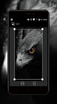 Eagle Wallpaper screenshot 3