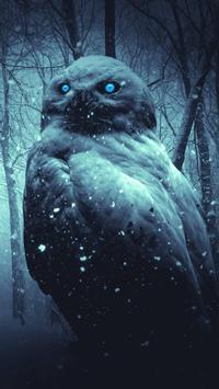 Night Owl Wallpaper screenshot 5