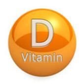 Vitamin D Foods icon