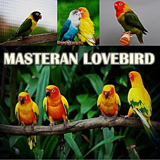 Masteran Lovebird Pikat For Android Apk Download