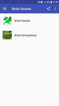 Birds Sounds poster
