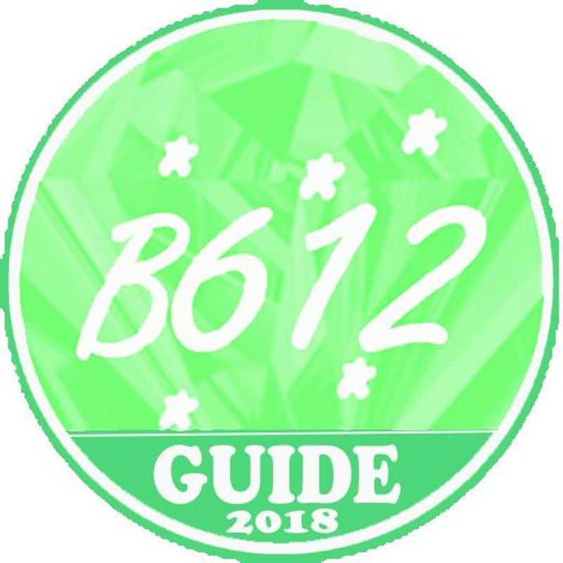 b6 12 download