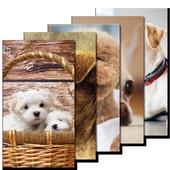 Dog Wallpaper HD icon