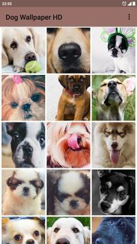 Dog Wallpaper HD apk screenshot