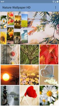 Nature Wallpaper poster