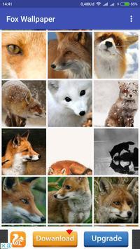 Fox Wallpaper apk screenshot