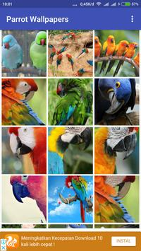 Parrot Wallpapers screenshot 2