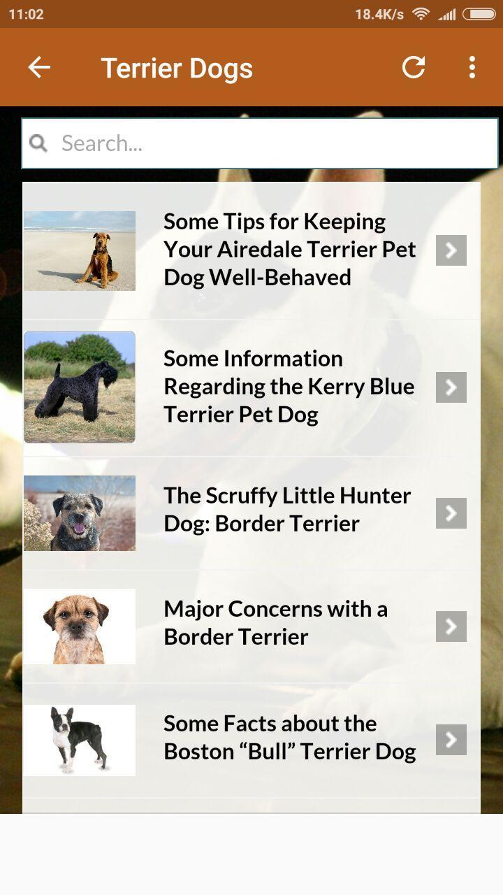Terrier Dogs 101 For Android Apk