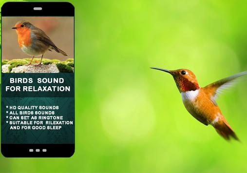 Bird Sounds For Relaxation screenshot 3