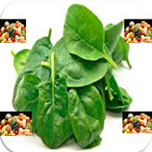 NEW HEALTHY SPINACH RECIPES icon