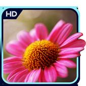Flower 3D Wallpaper icon