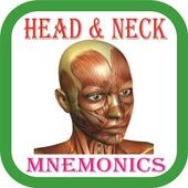Head & Neck Mnemonics icon