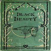 Story Of Black Beauty icon
