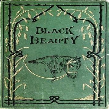 Story Of Black Beauty poster