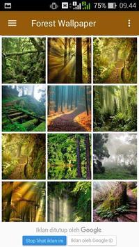 Forest Wallpapers apk screenshot