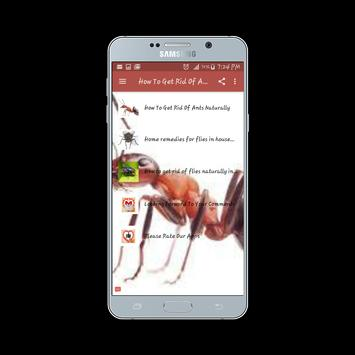 How To Get Rid Of Ants And Flies apk screenshot