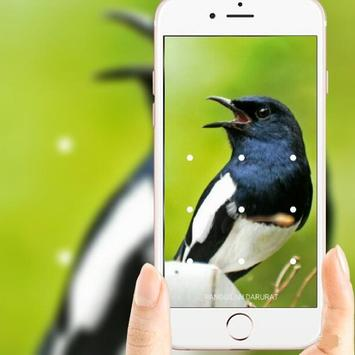 Bird Wallpaper apk screenshot