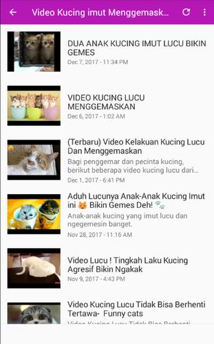 Video Kucing Lucu Terbaru Apk 1 0 Download For Android Download Video Kucing Lucu Terbaru Apk Latest Version Apkfab Com