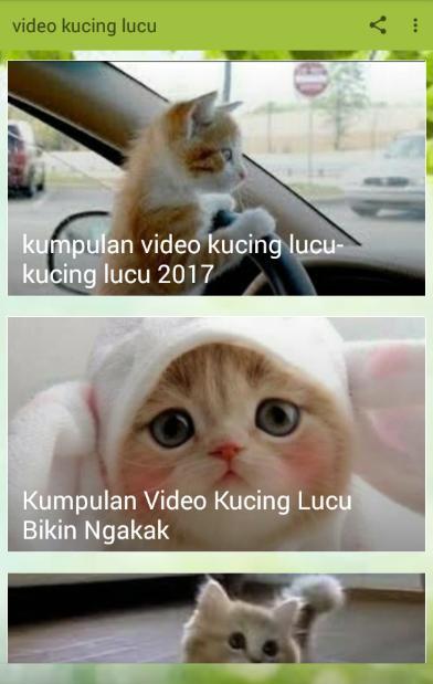 Menakjubkan 25+ Gambar Lucu Terbaru 2017 Bikin Ngakak ...