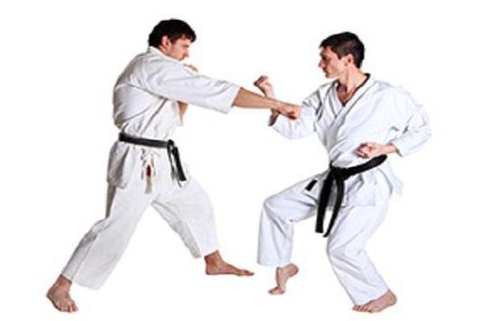 karate ( MARTIAL ARTS ) poster
