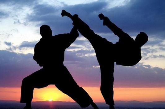 karate ( MARTIAL ARTS ) screenshot 2