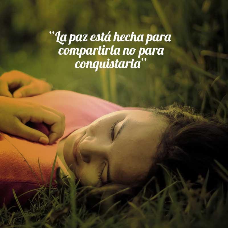 Frases Positivas De Amor Y Paz For Android Apk Download