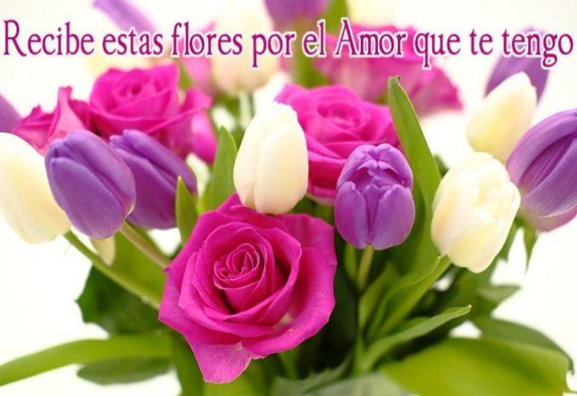 Flores Y Frases De Amor For Android Apk Download