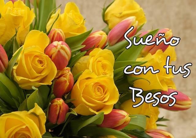Flores Y Frases De Amor Für Android Apk Herunterladen