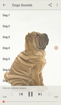 Dog Sounds poster