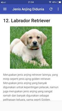 Jenis Jenis Anjing Di Dunia DogLover screenshot 3