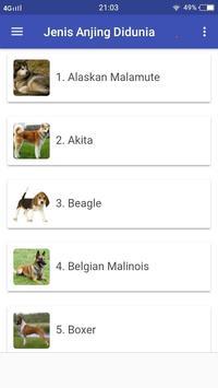 Jenis Jenis Anjing Di Dunia DogLover screenshot 1