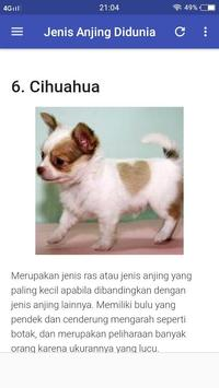 Jenis Jenis Anjing Di Dunia DogLover screenshot 2