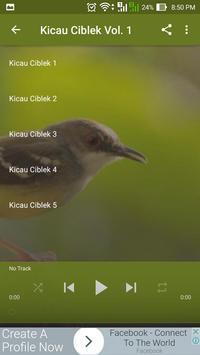 Kicau Ciblek screenshot 2