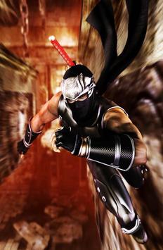 Ninja Gaiden Wallpapers poster
