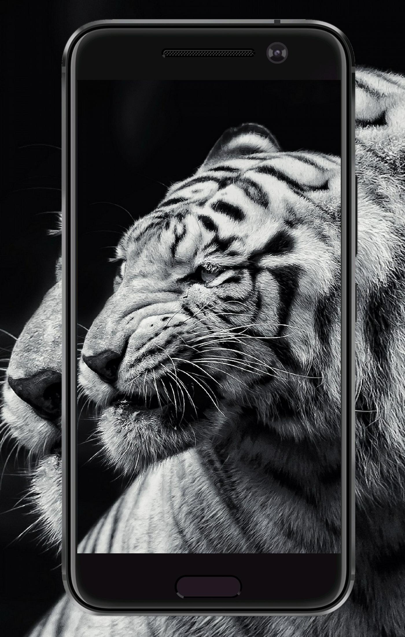 Tiger Wallpaper Hd For Android Apk Download