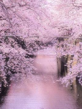 Sakura Art Wallpaper screenshot 13