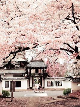 Sakura Art Wallpaper screenshot 14