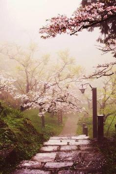 Sakura Art Wallpaper screenshot 19