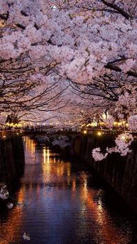 Sakura Art Wallpaper screenshot 20