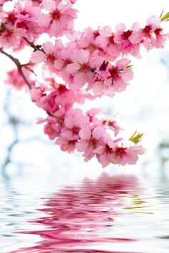 Sakura Art Wallpaper screenshot 23