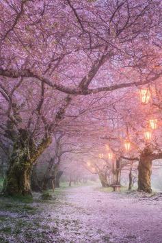 Sakura Art Wallpaper screenshot 2
