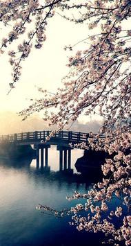 Sakura Art Wallpaper screenshot 9