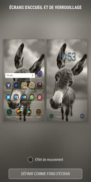 Donkey Wallpapers HD poster