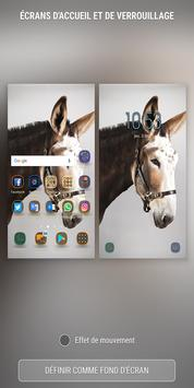 Donkey Wallpapers HD screenshot 2
