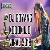 DJ Kodok Ijo House Music 2018 icon