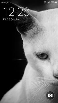 Best Cat Wallpapers apk screenshot
